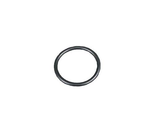 Fresh Head Gasket O Ring